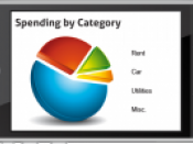 Financial Budget Mobile Applications